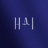 HAI CONCEPT STORE